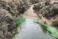 Eyüpsultanda göle kimyasal atık boşalttılar
