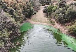Eyüpsultanda bulunan göle kimyasal atık boşaltıldı
