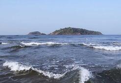 Karbon emisyonlarındaki artış, deniz seviyesini yükseltebilir