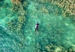 Nemrut Gölü Bitlis İlinde Nerede Gölün Özellikleri, Oluşumu Ve Tarihçesi