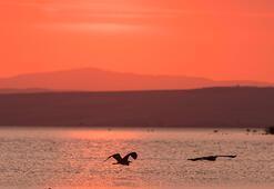 Manyas Gölü Balıkesir İlinde Nerede Gölün Özellikleri, Oluşumu Ve Tarihçesi