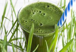 Arpa Çimi ve suyunun faydaları nelerdir, hangi vitaminleri içerir Arpa çimi hakkında bilinmeyeler