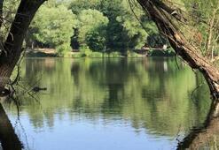 Karagöl Tabiat Parkı İzmir İlinde Nerede, Nasıl Gidilir Giriş Ücreti Ve Adres Bilgileri