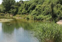 Ballıkayalar Tabiat Parkı Kocaeli İlinde Nerede, Nasıl Gidilir Giriş Ücreti Ve Adres Bilgileri