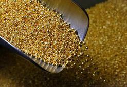 Dünyada çıkarılacak altın miktarı belli oldu