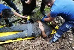 Kestane toplarken uçurumdan 25 metreden aşağıya yuvarlandı