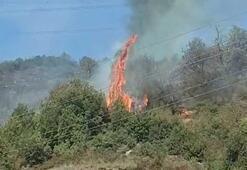 Ereğli'de 2 dönüm ormanlık alan yandı