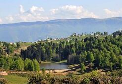 Hıdırnebi Yaylası Trabzon İlinde Nerededir Ve Nasıl Gidilir Rakım Bilgileri Ve Özellikleri
