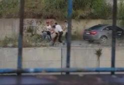 Gasp etmeye çalıştıkları kişiyi 7 metre yükseklikten dereye attılar