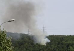 Son dakika... Aydos Ormanından dumanlar yükseliyor