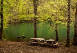 Yedigöller Milli Parkı Bolu İlinde Nerededir, Nasıl Gidilir Giriş Ücreti Ve Özellikleri