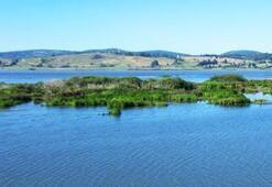 Ladik Gölü Samsun İlinde Nerede Gölün Özellikleri, Oluşumu Ve Tarihçesi