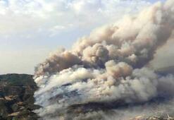 Bakan Pakdemirli: Aydındaki yangın kontrol altında