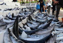 Balıkçılar açıkladı: Bir daha bu fiyata düşmez