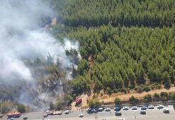 Akli dengesi yerinde olmayan kişi ormanı yaktı
