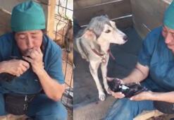 Annesi doğumda ölen yavru köpeği böyle hayata döndürdü