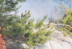 Yangın, felakete yol açmadan söndürüldü