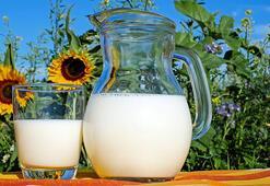 Süt Besin Değeri Nedir, Kaç Kalori İçerir İçerisinde Bulunan Vitaminler Nelerdir