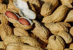 Yer Fıstığı Besin Değeri Nedir, Kaç Kalori İçerir İçerisinde Bulunan Vitaminler Nelerdir
