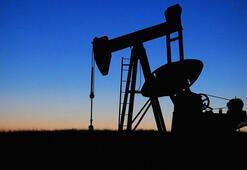 ABD petrol stokları 0.95 milyon varil yükseldi