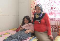 Samsunda 3 pitbullun saldırdığı kız çocuğu yaralandı