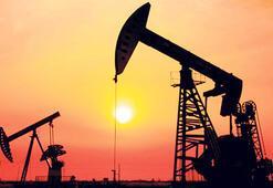 TPAOya 4 petrol arama ruhsatı