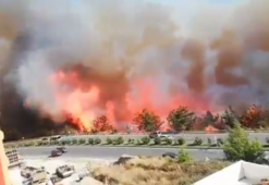 Hatayda orman yangını yerleşim yerlerine de sıçradı