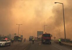 Tarım ve Orman Bakanı Pakdemirliden Hataydaki orman yangınına yönelik açıklama