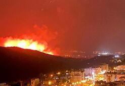 Hatay yangın sebebi nedir, neden çıktı Hataydaki yangını kim yaptı, ölen yaralanan var mı