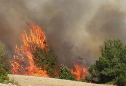 Hatay yangını neden çıktı, yangın sabotaj mı Hatay yangınında son durum nedir