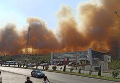 Terör örgütü, Hataydaki orman yangınını propaganda çalışmasına dönüştürdü