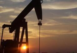 Libya Ulusal Petrol Kurumu Şerara petrol sahasındaki mücbir durumu kaldırdı