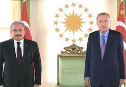 Cumhurbaşkanı Erdoğan, TBMM Başkanı Şentopu kabul etti