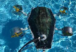 Üniversiteli 7 gençten müthiş başarı İlham kaynakları kaplumbağa oldu