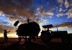 Borcunu zamanında ödeyen çiftçilere Bereketli Kredi
