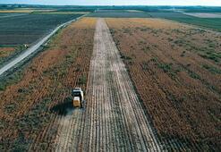 Tarım ürünleri üretici fiyatları Eylülde arttı