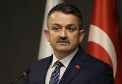 Bakan Pakdemirli: Türkiyede 19 milyon ton gıda israf ediliyor