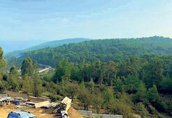 Muğla ormanlarının  yüzde 65'i maden ruhsatlı