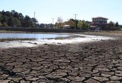 Kuş cenneti Yayla Gölünde 20 yılın en düşük su seviyesi