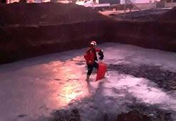 Betona saplanan horozu, itfaiye kurtardı