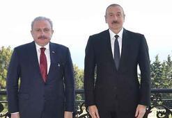 Aliyev, TBMM Başkanı Şentopu kabul etti
