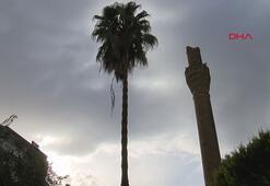 Antalyada şiddetli fırtına minareyi devirdi