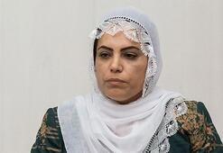 HDPli milletvekilinden Diyarbakır annelerine hakaret