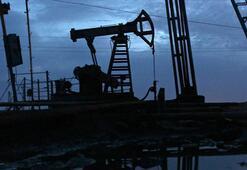 50 finans kuruluşu daha petrol ve doğal gaz yatırımlarından çekiliyor
