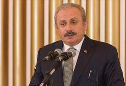TBMM Başkanı, 12. Uluslararası Dünya Dili Türkçe Sempozyumunun  açılışında konuştu