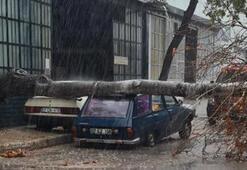 Antalyada sağanak ve rüzgar yaşamı olumsuz etkiledi