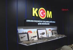 Adnan Oktarın kaçak fosilleri müzeye teslim edildi