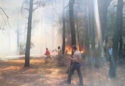Yangınlar yoğun tahribat yaptı