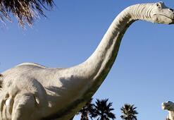 Dinozorları tanıyalım: Apatosaurus