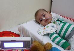 SMA hastası minik Enisin tedavisi için yardım kampanyası